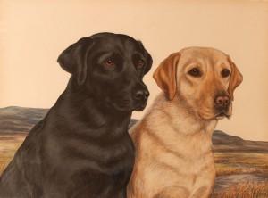 Ch Ruler of Blaircourt and Sh Ch Tessa of Blaircourt, watercolour by Kate C Brown.