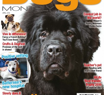Cover(1)