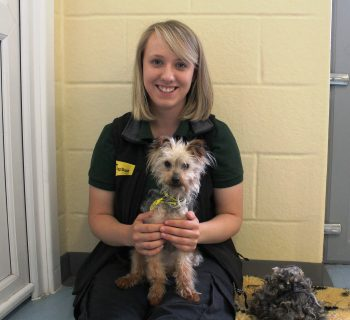 Photo 3 - Trixie is pictured having a cuddle from Canine Carer Lucy Owens, alongside the pile of fur that had been removed.