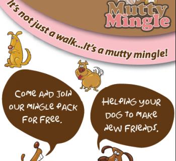 Mutty Mingle