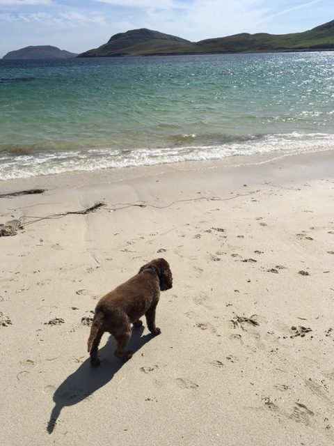 Louis on the beach in Outer Hebrides