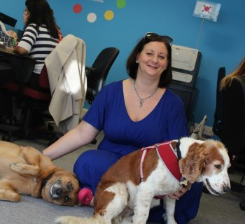 Office dogs Jasper and Pru are pictured with owner and MD Claire.