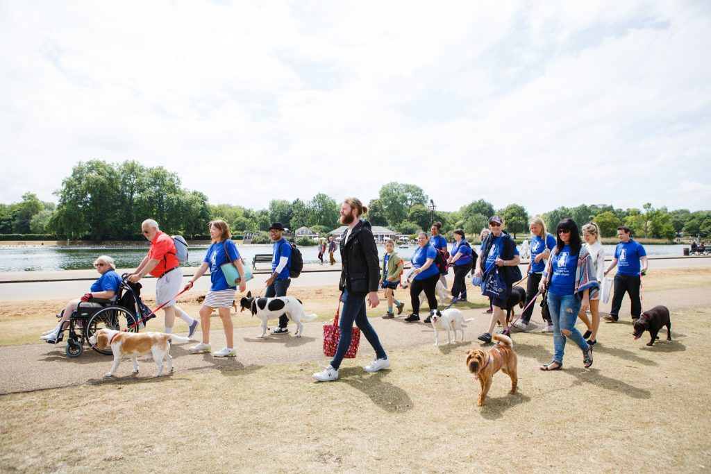 W.A.L.K Dog Walk for The Mayhew