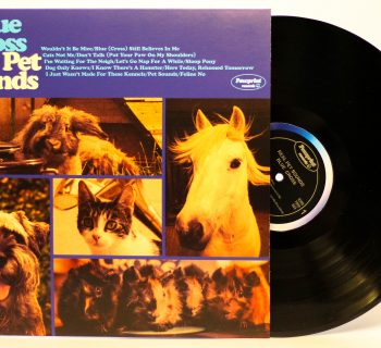 Pets in the care of Blue Cross feature on The Real Pet Sounds albulm, a tribute record celebrating the 50th anniversary of the Beach Boys' seminal Pet Sounds album.