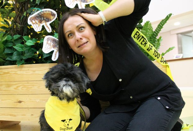 there-will-be-gruesome-findings-lurking-around-dogs-trust-manchester-for-howl-oween