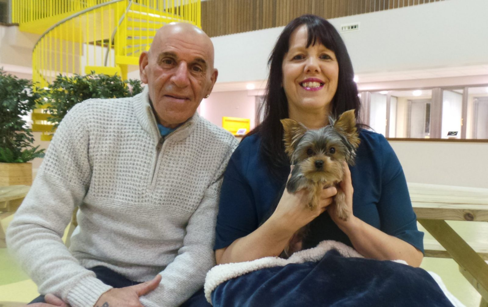 four-month-old-yorkshire-terrier-simon-is-pictured-with-new-owners-deborah-harmer-and-les-lewis
