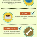 essential-puppy-supplies-checklist-infographic