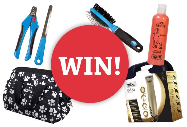 Win a pamper package courtesy of Wahl