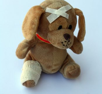 First Aid teddy