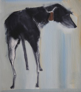 DT0715_ The Dog Show_Lurcher by Sally Muir