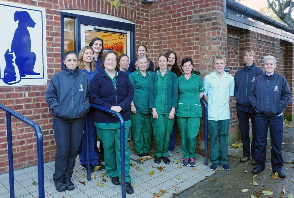 The Mayhew's Animal Welfare Officers and Vet Team