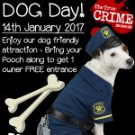 dog-day-promotion