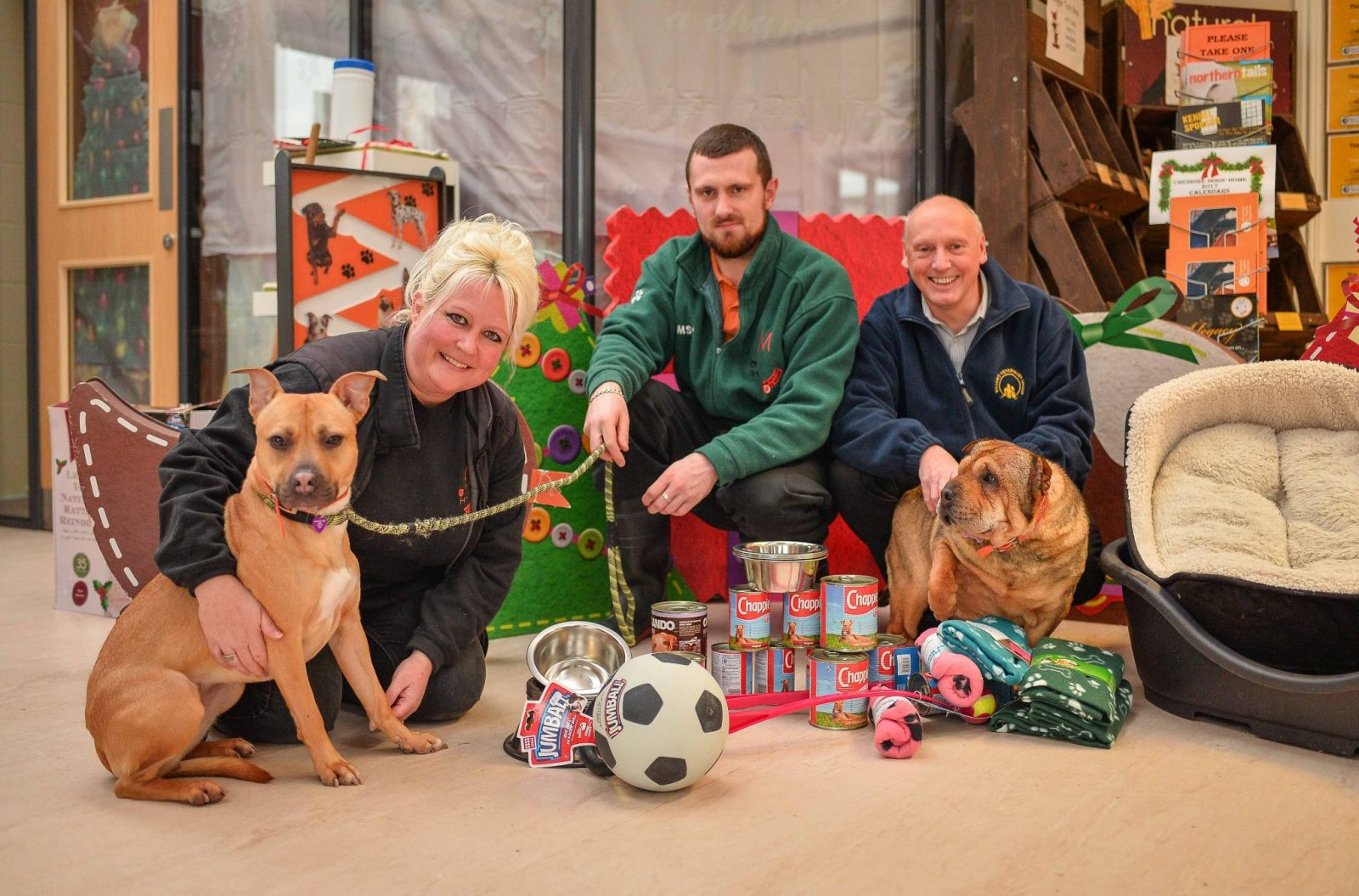 Can you donate to the Willows Pawsome Pet Christmas Appeal? Pictures are Cheshire Dog's Home Assistant Manager Kate Roberts, David Crane of Willows Veterinary Group and Cheshire Dog's Home Assistant Will Featonby.