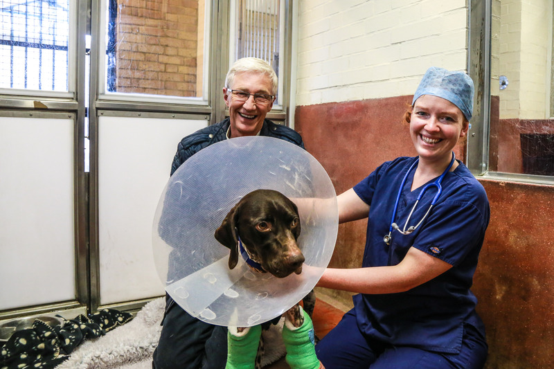 Paul, Vet Claire and Mickey in bandages
