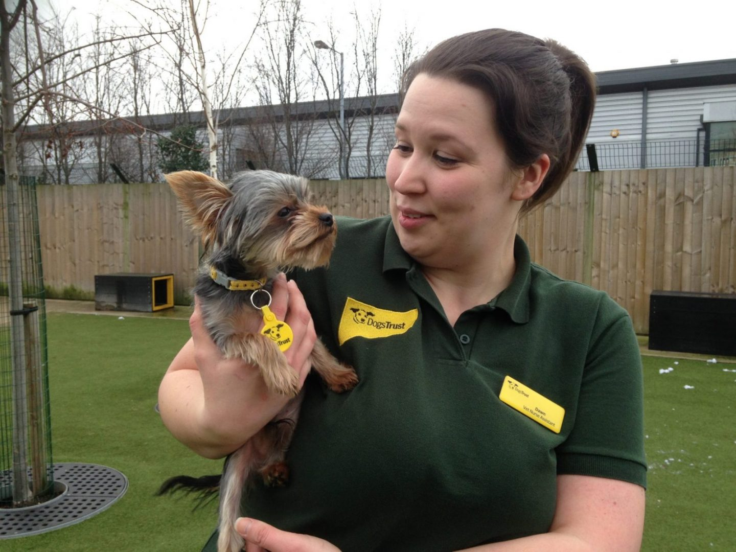 since-arriving-at-dogs-trust-manchester-just-before-christmas-simon-has-brought-a-smile-to-the-faces-of-staff-including-veterinary-nurse-assistant-dawn-leyland