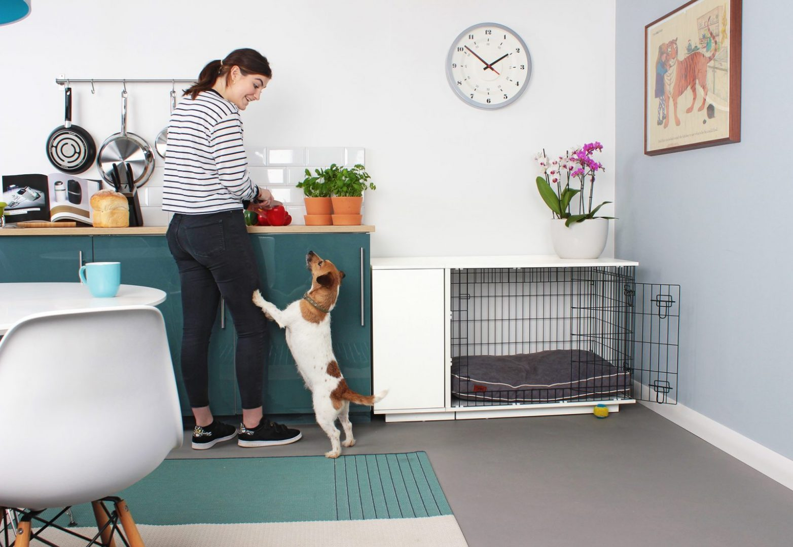Stylish New Dog Crate Looks Just Like Furniture And Even