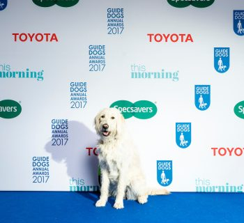 Guide Dogs Awards