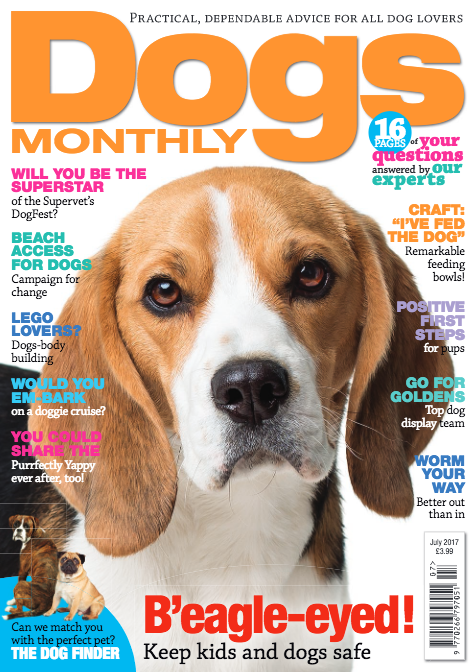 Dogs Monthly July 2017 Magazine Sold Out Dogs Monthly