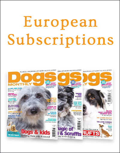 European Subscription