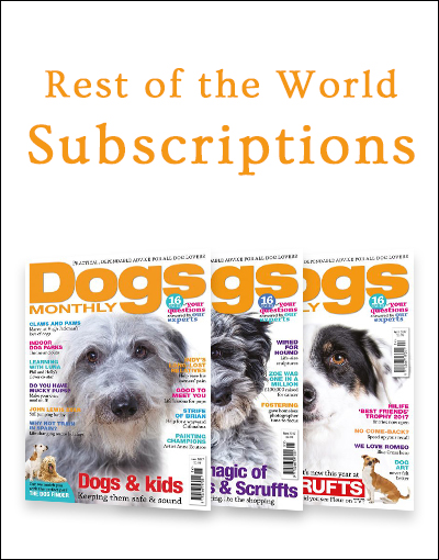World Subscriptions