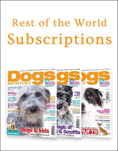 World Subscriptions