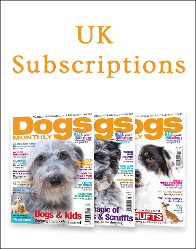 uk subscriptions