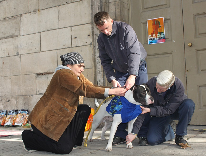 helping homeless owners and their pets