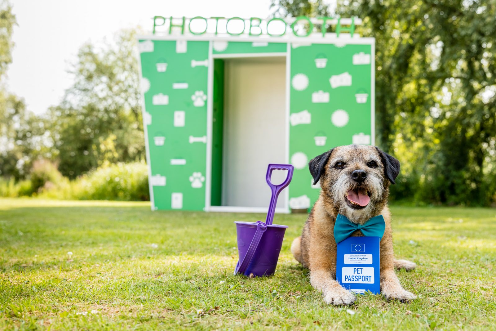 dogfest photo booth