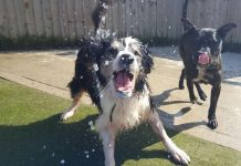 keeping cool in hot weather
