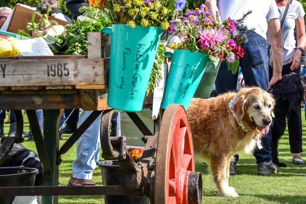 Chiswick House Dog Festival