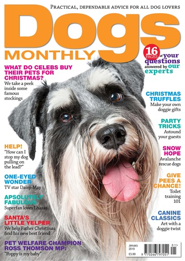 Dogs Monthly January 2019 Magazine