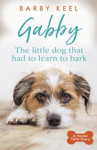 gabby book cover