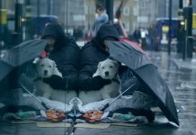 Homeless man and his dog sit outside in the rain