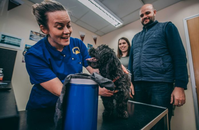 Maggie-May is pictured with vet Naomi Roberts, owner Jessica Tolley and her partner Ross