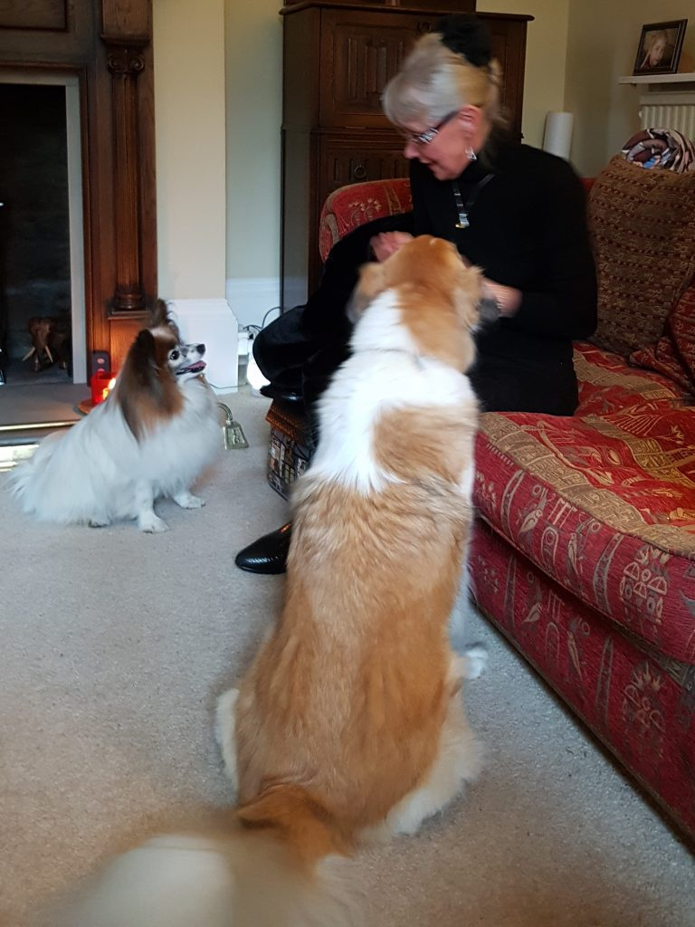 Ursu waits patiently with René