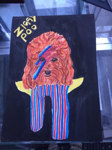 Ziggy Poo inspired by David Bowie