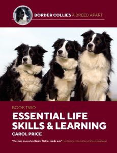 Essential Life skills and learning
