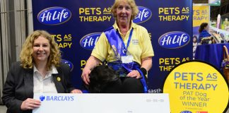 Last year's winner Sheena & Inca HiLife Pat Dog Of The Year 2018