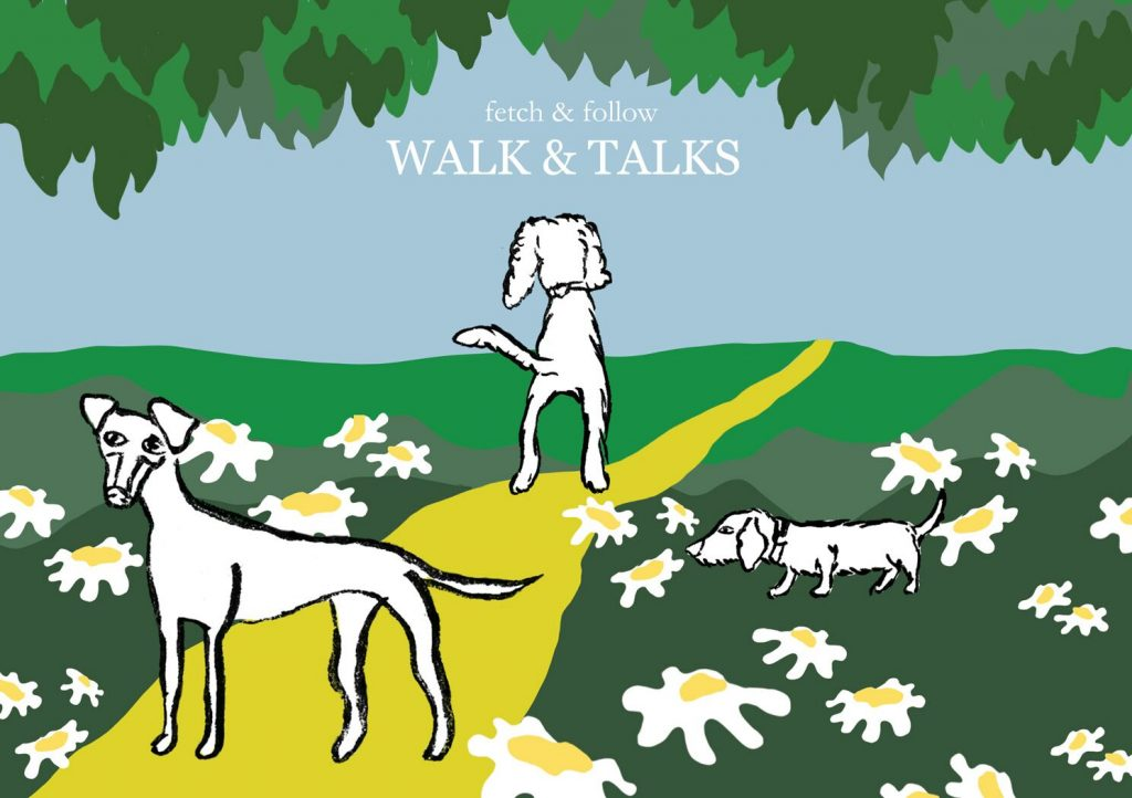 Walk and Talk countryside event