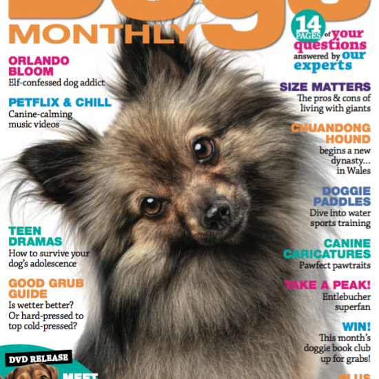 Dogs Monthly July 2019 Issue