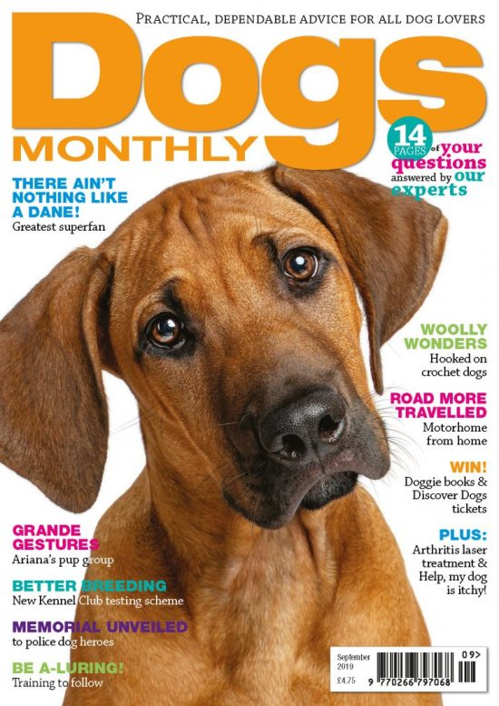 Dogs Monthly September