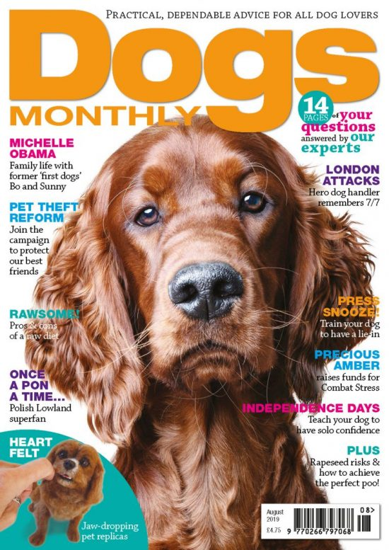 Dogs Monthly august