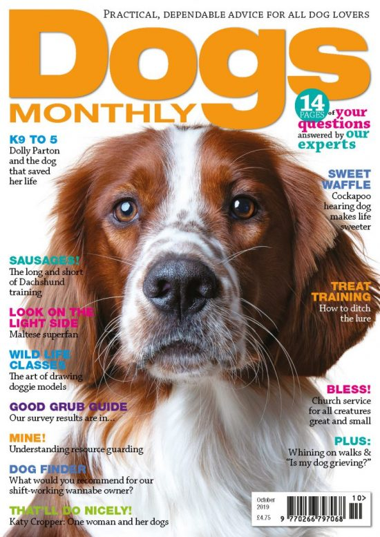 October Dogs Monthly