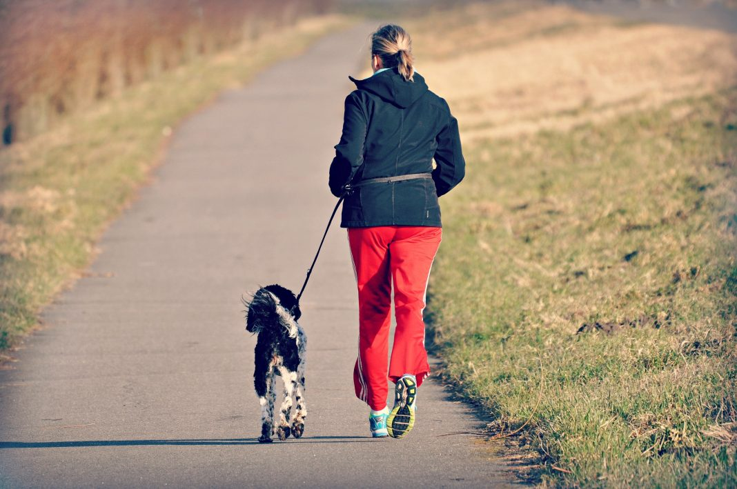 Running person with dog