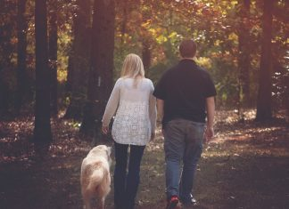 couple walking dog in forest