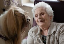 therapy dog marlo with resident