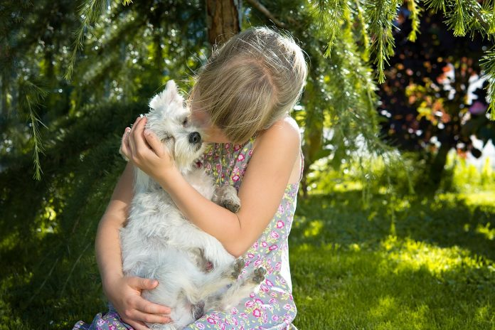 Study finds gap on owners' understanding of their animals