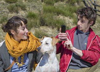 dogs make people instantly more attractive on dating apps