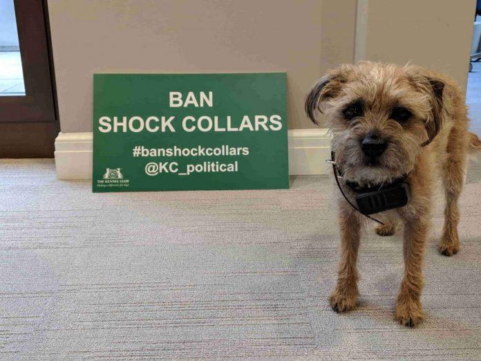 ban electric collars