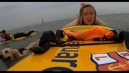 RNLI lifeguards rescue Rosa the Golden Retriever